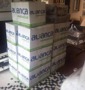 empresa de mudancas com caixas para empacotamento